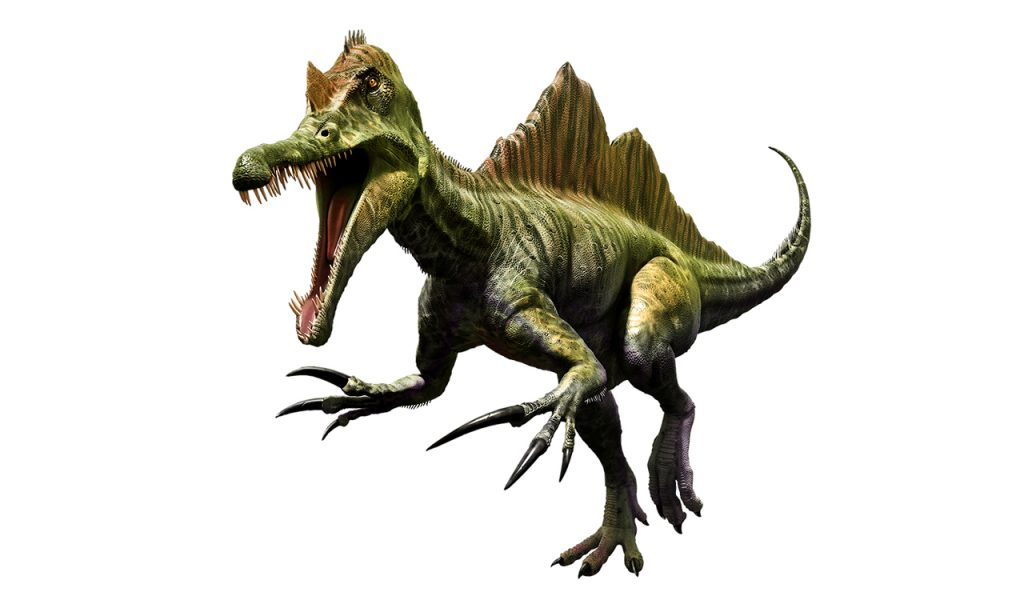 Dinosaur trivia questions for kids