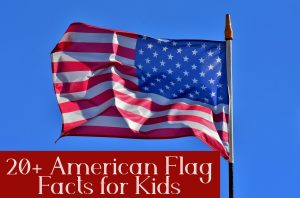 If you want to know the answer of these questions  and other interesting facts about the American flag then continue reading these American Flag Facts for Kids.
