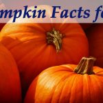 25+ Interesting Pumpkin Facts for Kids
