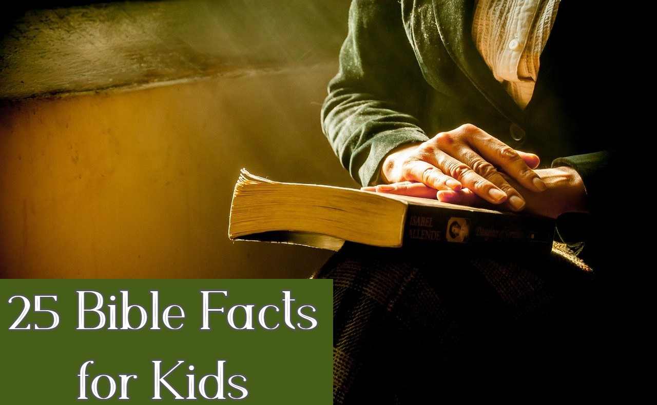 Bible Facts for Kids